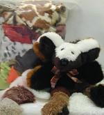 Sampler Box of Fur - Product Image